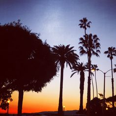 Coachella Festival with Smart Car/Mercedes Benz - The Style Traveller Travel Expert, Coachella Festival, Smart Car, Travel List, Santa Monica, Luxury Travel, Palm Springs, Travel Style, Palm Trees