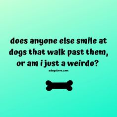 Dog Quotes, Animal Quotes, Funny Quotes, Crazy Dog Lady, Pet Memorials, New Puppy, Dog Walking, Dog Life, I Love Dogs