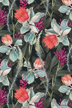 This week's is from a beautifully well crafted print collaboration between Australia's Shelley Steer and Louise Jones. This week's is from a beautifully well crafted print collaboration between Australia's Shelley Steer and Louise Jones. Motifs Textiles, Textile Patterns, Textile Prints, Print Patterns, L Wallpaper, Pattern Wallpaper, Pattern Illustration, Botanical Illustration, Landscape Illustration