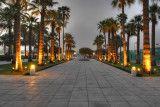 Garden at dawn (Doha Qatar) by MarcWildPassion