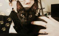 Aurore Gardrat Opie, mon petitou de 8 mois maintenant ! #PerleNoire