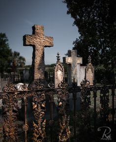 Magnolia Cemetery in Charleston South Carolina has many beautiful scenes to choose from. The cemetery is famous for its Gothic sculptures, mossy covered oaks and rod iron fences. A must see if you are in the area.