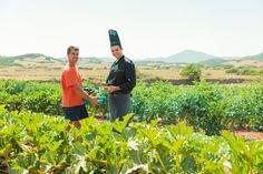 Our Hotel Carlos III Cheff Gerardo with the farmer. Carlos Iii, Menorca, Ecology, Farmer, Mountains, Nature, Travel, Naturaleza, Farmers