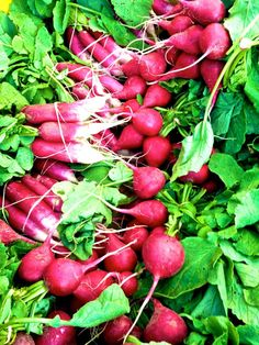 i love radishes. that is all ~ #food #nutrition #healthyeating #farmersmarket