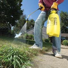 Crabgrass is a tough opponent, but with a lawn spreader, a pump sprayer and a few turf products you can get rid of crabgrass in the spring and control it throughout the summer. Garden Rake, Garden Weeds, Lawn And Garden, Garden Tools, Lawn Maintenance, Landscape Maintenance, Yard Care, Outdoor Projects, Outdoor Ideas