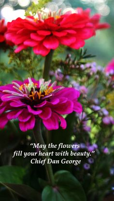 """""""May the flowers fill your heart with beauty.""""  Chief Dan George -- Find inspiring touchstone quotes for wedding vows and special occasion speeches at http://www.examiner.com/article/over-thirty-touchstone-quotes-for-wedding-vows-and-speeches"""