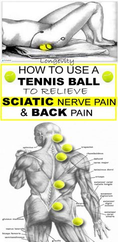 How to Use a Tennis Ball to Relieve Sciatic Nerve Pain and Back Pain Fitness Hacks, Fitness Workouts, Health Fitness, Sciatica Relief, Sciatic Pain, Back Pain Exercises, Sciatica Exercises, Nerve Pain, Massage Therapy