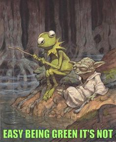 Yoda and Kermit.