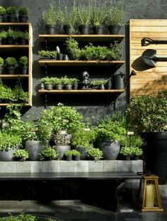 Inspiration for interior of potting shed