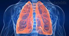 Pranayama, Sudarshan Kriya, Respiration Yoga, Get Rid Of Cough, Best Way To Detox, Purifier, Respiratory System, Health Tips, Health And Wellness