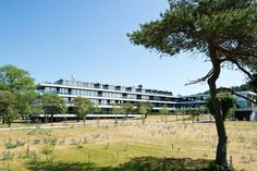 Tott Hotel Visby in Visby, Sweden - Lonely Planet
