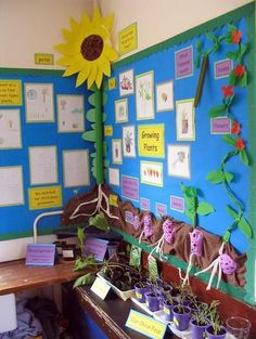Spring and flower science bulletin board idea: Love this growing plants display - very creative!!!  Could do one main flower (sunflower) stem out of a pool noodle and students' art along with it- very cool idea.
