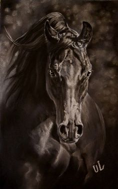 Yuliya Lychagina Cute Horses, Pretty Horses, Horse Drawings, Animal Drawings, Horse Tattoo Design, Horse Artwork, Most Beautiful Horses, Pretty Animals, Horse Portrait