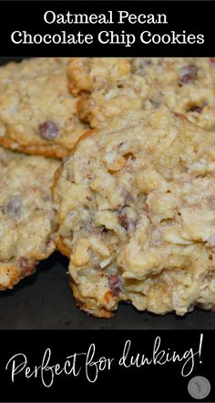 Add these Oatmeal Pecan Chocolate Chip Cookies to your holiday baking list. They're moist, super flavorful and great for dunking! Mini Chocolate Chips, Chocolate Chip Cookies, Eggnog Cookies, Latest Recipe, Oatmeal Recipes, Vegetarian Chocolate, Stick Of Butter, Holiday Baking, Just Desserts