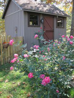 Garden Shed With Porch Paint Trendy Ideas Backyard Gazebo, Outdoor Sheds, Backyard Fences, Fire Pit Backyard, Backyard Landscaping, Painted Shed, Painted Cottage, Shed Paint Colours, Garden Shed Interiors