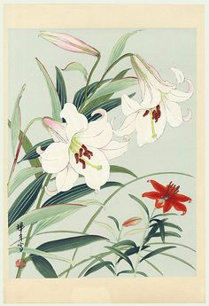 Lilies by Zuigetsu Ikeda (1877 - 1944)