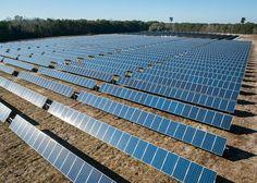 """""""Il 28% di #energia prodotta da fonti #rinnovabilientro il 2030 ela chiusura delle centrali a #carbonenel 2025. Sono questi i principali obiettivi ambiziosi ma perseguibili contenuti nella #StrategiaEnergeticaNazionale""""  #sostenibilità #sustainability #renewableenergy #energy #energia #cleanenergy #green #paleeoliche #wind #vento #environment #solarenergy #solarpower  #energiapulita #energierinnovabili #pannellisolari #energiasolare #italia #italy #governo #politica #ambiente #green…"""