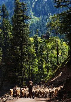 neelam valley, Pakistan