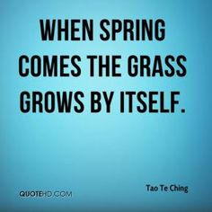 When spring comes the grass grows by itself.