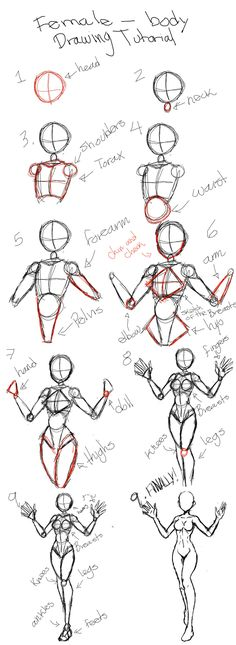 Drawing tutorial for female body - drawing the female human . - Tutorial for drawing female body – drawing the female human body Tutorial for drawing female body - Art Drawings Sketches Simple, Pencil Art Drawings, Drawing Tips, Drawing Ideas, Easy Drawings, Drawing Drawing, Manga Drawing Tutorials, Drawing Techniques, Drawing Hair