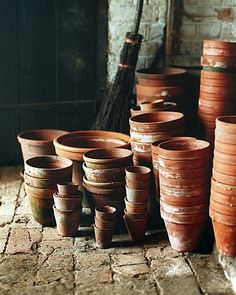 Rejuvenation Salvage Sighting: terra cotta pots just get better with time