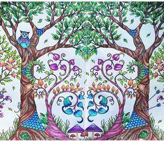Floresta encantada/ jardim secreto Árvores página dupla