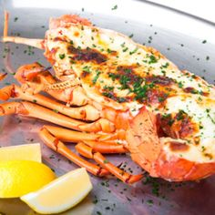 Shellfish Bake And Broil: Fresh or Frozen? http://learntocook.com/industry-news/shellfish-bake-and-broil-fresh-or-frozen/