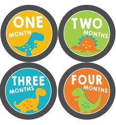 Dinosaur Baby Month Stickers