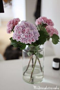 MRS JONES Hydrangeas, Vases, Glass Vase, Flowers, Inspiration, Home Decor, Biblical Inspiration, Decoration Home, Room Decor