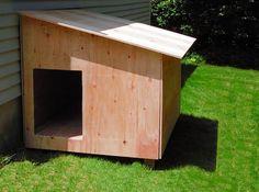 Costruire una #casetta per #cani fai da te: strumenti e procedimento! #faidate #DIY #legno #wood #casettepercani #doghouse