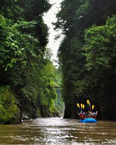 Bring it on!  The Pacuare River is a world class white water #rafting destination. Book a day trip or overnight at a remote #jungle lodge for the ultimate #adventure! : @stevensaborio  #CostaRicaExperts #CostaRica