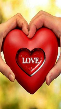 Betta Fish Tattoo, Arabian Beauty Women, Couple Pictures, Lily, Wallpaper, Beautiful, Hearts, Couples, Google