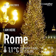 Xmas tree in St. Peter's square.  Learn. Live. Love. Rome.  With www.afriendinrome.it