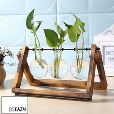 Product Name Glass and Wood Vase Planter Terrarium Table Desktop Hydroponics Plant Bonsai Flower Pot Hanging Pots with Wooden Tray Home Deco. Terrarium Table, Glass Terrarium, Buy Terrarium, Glass Planter, Glass Vase, Planter Pots, Glass Bowls, Glass Globe, Modern Planters