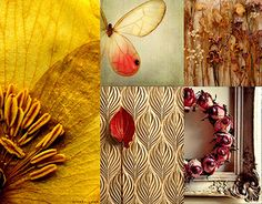 """Check out new work on my @Behance portfolio: """"A collection of shrugs inspired by Herbarium."""" http://on.be.net/1OarZEX"""
