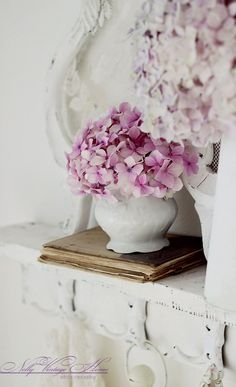Pink hydrangeas in a white vase  #hydrangeas #flowers #nature