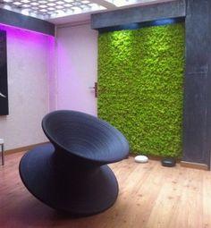 » Moss wall
