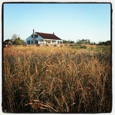 Barrington Living History Farm near Brenham via Instagram #Fall4Tx Texas Vacations, Texas Travel, Autumn Photography, Fall Recipes, State Parks, Traveling, History, House Styles, Instagram