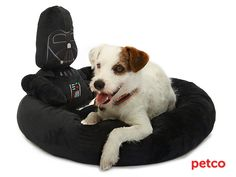 How cute is this!!!!  Petco's Star Wars Pet Fans Collection: For Sith Tzus, Jedi Javanese, and All Furry Companions (via starwars.com)