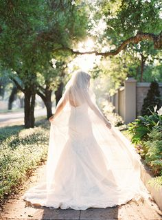 Outdoor, Bridal Portrait in Strapless, Lace Matthew Christopher Wedding Dress and Chapel Length Veil