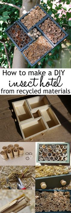 Wildlife garden: How to make an insect hotel Make a cute insect hotel for bees, ladybirds and other insects. Made from a mini chest of drawers and filled with straw, cardboard and pampas grass tubes Garden Crafts, Garden Projects, Garden Art, Garden Design, Kid Garden, Bug Hotel, Mason Bees, Bee House, Ideias Diy