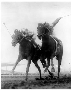 Secretariat's sire, Bold Ruler, fights it out with Gallant Man.