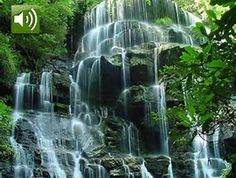Image result for Free 3D Moving Wallpaper Waterfall