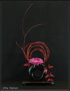 Ikebana Flower Arrangement, Ikebana Arrangements, Flower Vases, Art Floral, Deco Floral, Floral Design, Flower Show, Flower Art, Contemporary Flower Arrangements
