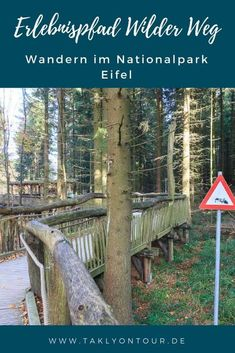 Wilder Weg The adventure trail in the Eifel National Park Camping List, Family Camping, Camping Hacks, Travel Hacks, Vacation Ideas, Vacation Travel, Trailers Camping, Europa Tour, Road Trip With Kids