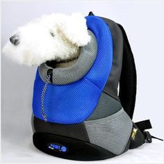 Pet Backpack by Crazy Paws - a carrier bag that lets you hold your pet comfortably close to you! For small dogs and cats. Available in small and large sizes.
