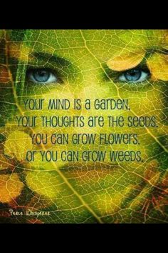 Your mind is a garden your thoughts are the seeds. You can grow flowers or you can grow weeds.
