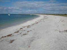 The campsites and rustic cabins at Cayo Costa Island State Park are literally steps away from this incredible crescent-shaped Gulf beach.