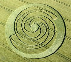 Magic in the Fields :)  http://www.psychedelicadventure.net/search/label/Crop%20Circles