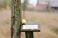 Unsere Oberösterr. Weinbirne im #Birnengarten #Ribbeck #Havelwasser #Havelland
